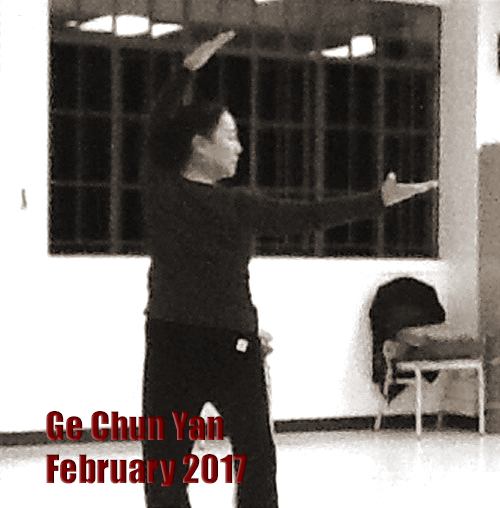 Cheng Bagua Ge